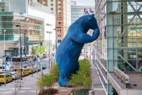 denver convention center bear small picture